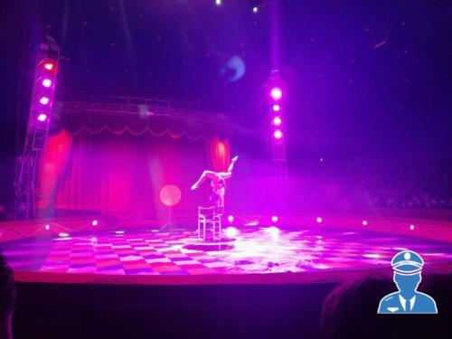Domenica al circo10